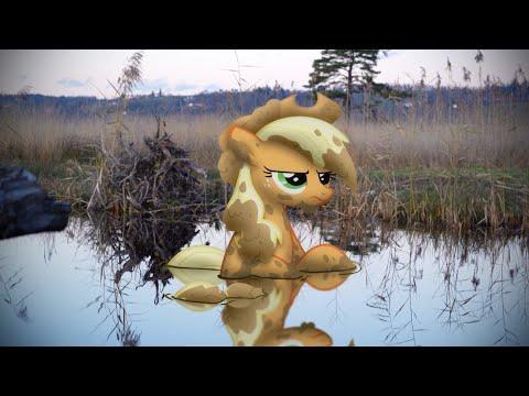 Man versus Ponies 3 (MLP in real life)