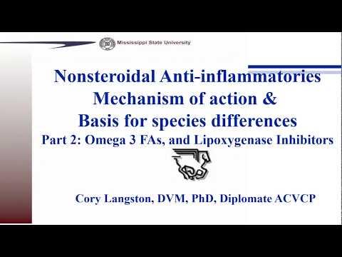 Anti-inflammatory Therapies ,Part 2: Omega-3 Fatty Acids And Lipoxygenase Inhibitors