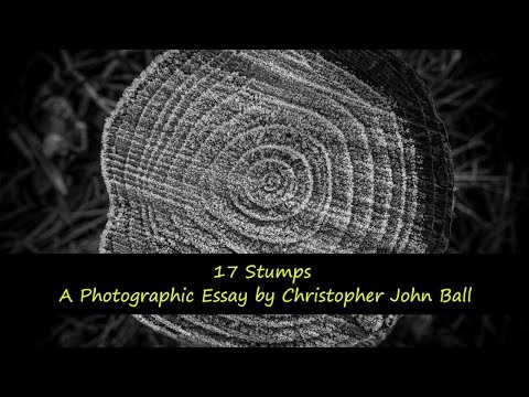 17-stumps---a-photographic-essay-by-christopher-john-ball