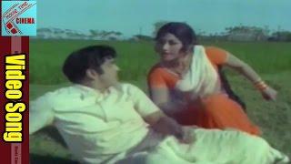 Pilloyi Jagratha Video Song || Datta Putrudu  Movie || ANR, Vaani Sri || MovieTimeCinema