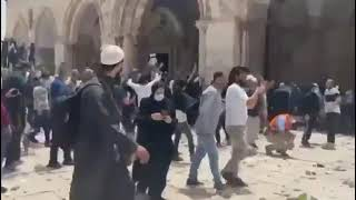 في القدس حماة الأقصي يهتفهون - بالروح بالدم نفديك يا أقصي - انقذوا المسجد الأقصي #المسجد_الاقصي