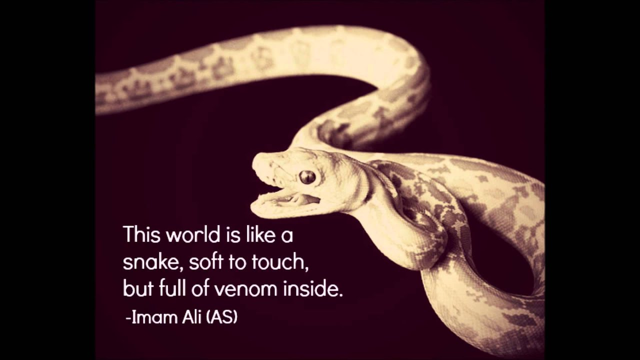 Imam Ali As Quotes Part 8 Youtube