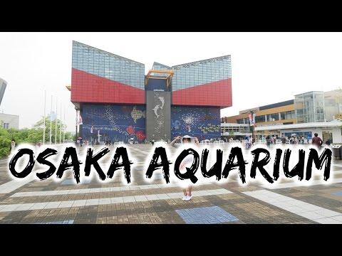 Osaka Aquarium | Tempozan Animal Park | Japan Trip 2015 | Part 5