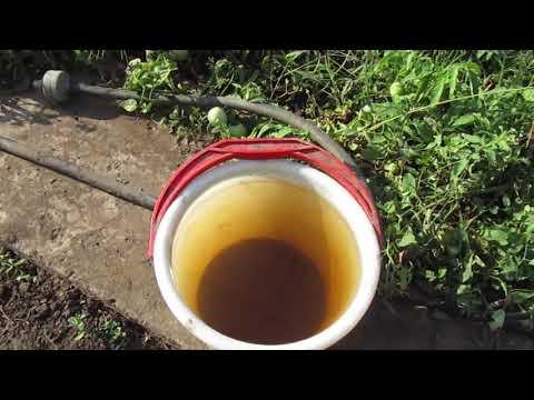 5. Домашний мастер. Некоторые способы повышения плодородия почвы