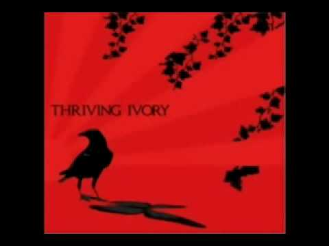 Thriving Ivory - Angels on the moon(acoustic).wmv