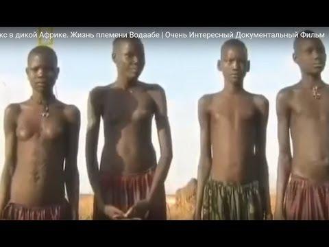 Секс в африке дикие племена, порно видео кончают на лицо телеведущей