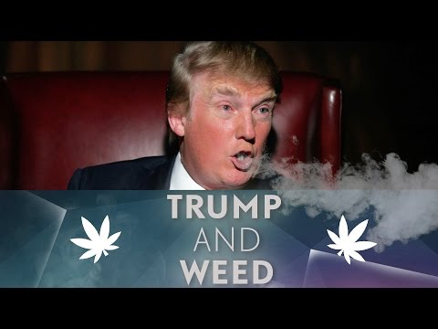 What will president Trump mean for marijuana legalization?