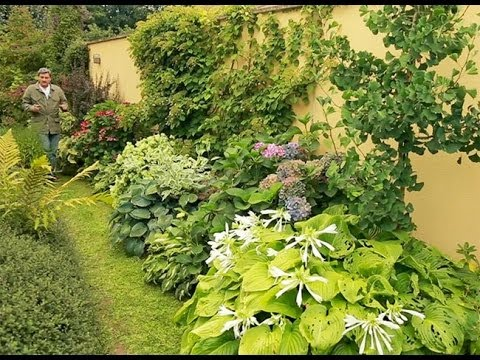 Un massif au pied d 39 un mur youtube for Plante ombre exterieur