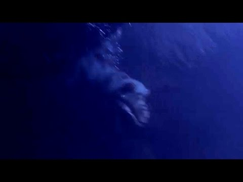 SCARY!! LAKE MONSTER ATTACKS Woman! SHOCKING Under Water Video [Canada Lake Champlain] 2015
