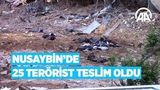 Nusaybin'de 25 terörist teslim oldu