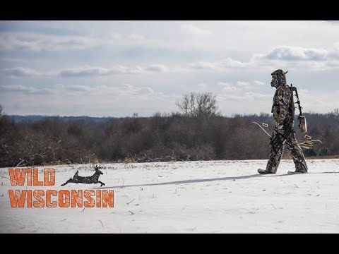 What can active habitat management do for your deer hunt? – Off the Record podcast Ep. 4