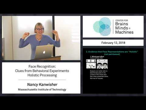 2.5 - Face Recognition: Clues from Behavioral Experiments - Holistic Processing