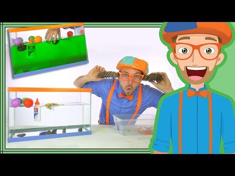 1 Hour Blippi Compilation  | Educational Videos for Children  Sink or Float