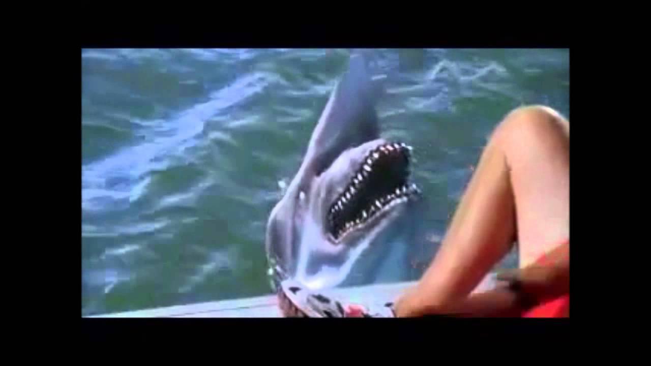 Decades Of Horror Malibu Shark Attack Sharks Youtube