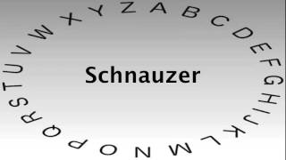 Spelling Bee Words And Definitions — Schnauzer
