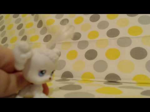 LPS: LPS Collection: CATS AND DOGS