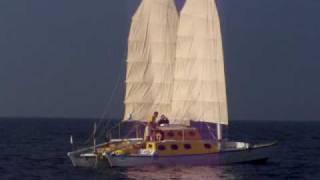 PHA, another junk rigged wharram catamaran