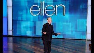 Ellen's Stressful Fly Problem