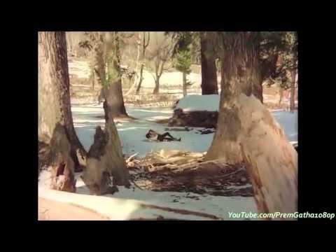 dekha-ek-khwab-to-ye-silsile-huye-o)-silsila-youtube
