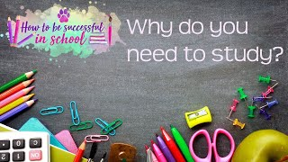 Why do you need to study effectively? How to be Successful in School #1