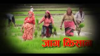 Download Video Krishi Today Episode 32 Jestha 02 FINAL UPDATE MP3 3GP MP4