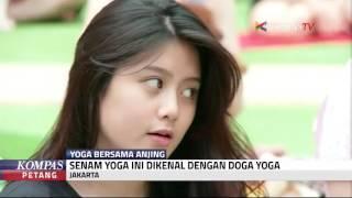 """Doga Yoga"" Yoga Dengan Anjing Kesayangan"