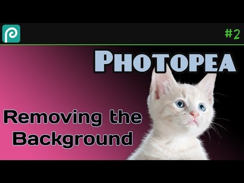 Removing The Background From An Image With Photopea