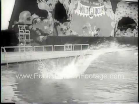 Aquacircus High Diving Show in New York Newsreel PublicDomainFootage.com