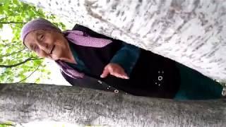 """ТВ """"КАРАЧАЕВСК"""". КЛАРА ГЕРЮГОВА, 90 ЛЕТ!. ЗАСЛУЖЕННЫЙ МЕДИК КЧР. ЛЮБИТЕЛЬНИЦА НАРОДНЫХ ПЕСЕН. СЫНТЫ"""