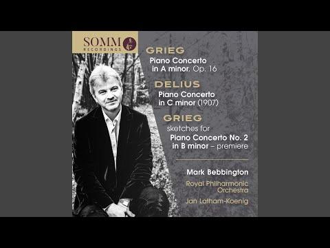 Piano Concerto in A Minor, Op. 16: I. Allegro molto moderato