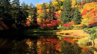 上川町高原温泉の紅葉✨
