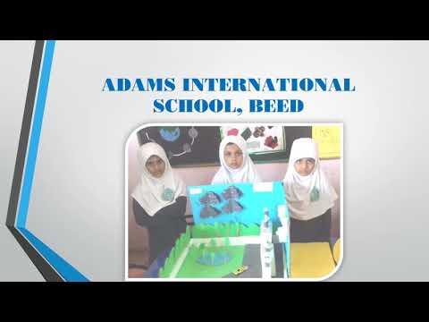 Adams International School, Beed Science Exhibition G II