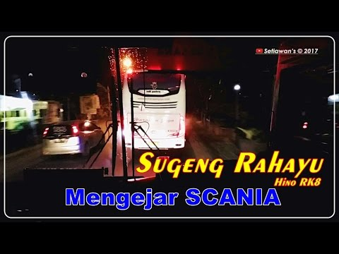 CATCHING SCANIA | Sugeng Rahayu PATAS in Action VS 3 Unit SCANIA, Dll