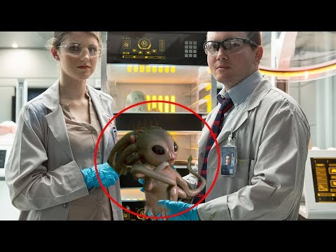 7 Mysterious Animals Created By Scientists #2