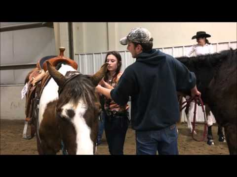 Nebraska Paint Horse Club - Fuzzy Colors Show - Speed Events - March 19-20, 2016