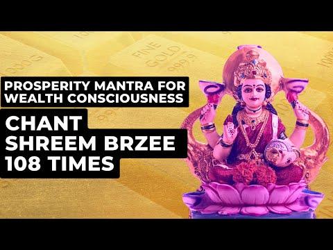 Prosperity Mantra For Wealth Consciousness | Chant Shreem Brzee 108 Times