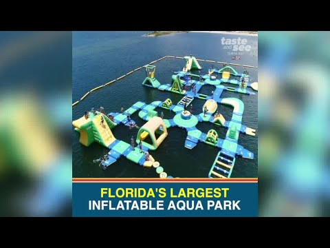 Check Out Floridas Largest Inflatable Aqua Park In Pasco County
