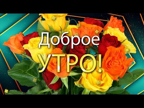 ✅Доброе утро! Эти прекрасные розы для тебя!✅Анимационная открытка 4К