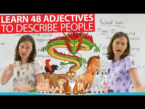 Learn 48 adjectives in English to describe people with Chinese astrology