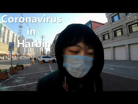 Coronavirus in Harbin, Heilongjiang Province - Vlog in China