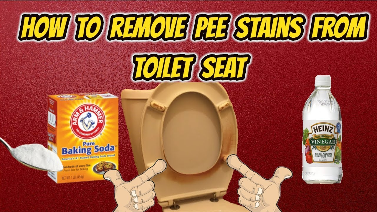 How to clean the inside of the toilet from stone and plaque of urinary, lime at home folk remedies