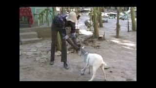 ZOKLO 2 NEW HAITIAN MOVIE COMEDY