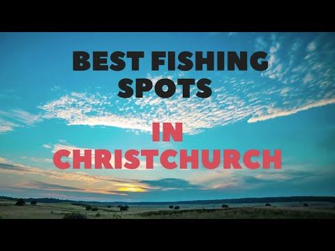 The Best Land Based Fishing Spots Around Christchurch, New Zealand