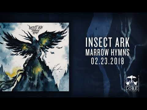 INSECT ARK - Sea Harps (official audio)