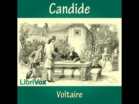 fickle fortune in candide by voltaire Candide marries cunégonde and buys a small farm with the last of his eldorado fortune the entire party — candide candide is considered voltaire's.