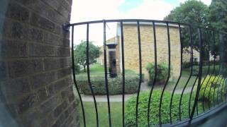 Gopro Hd Time Lapse: Bird Feeder