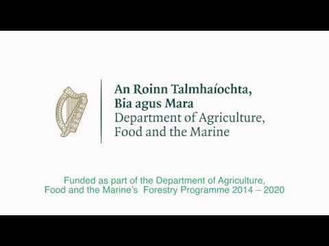 Forestry - Forestry Careers Ireland