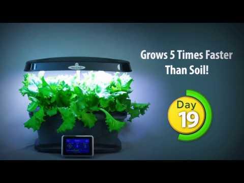 Aerogarden Extra Soil Weed Grow Opp Doovi