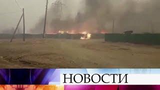 В Забайкалье ситуация с лесными пожарами близка к критической.