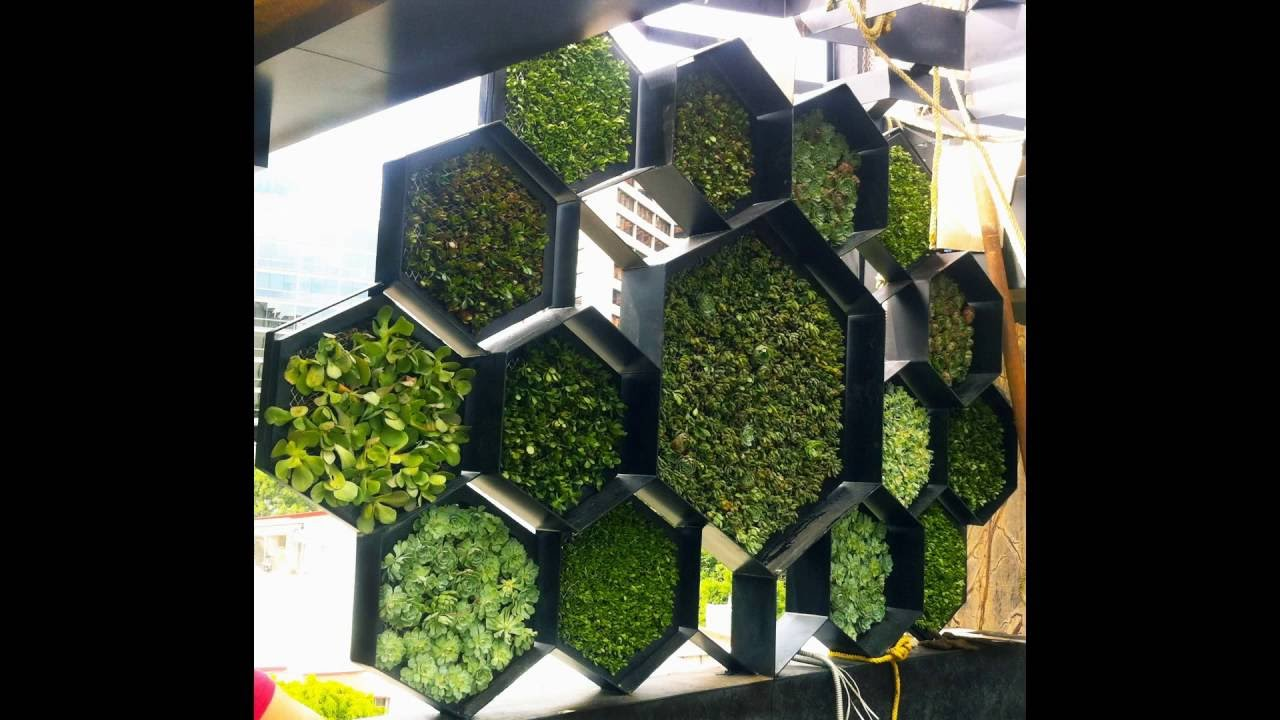 Instalaci n de muro verde panal plakarq cdmx youtube for Materiales para un muro verde